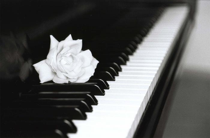 ISTITUTO MUSICALE PRIVITERA, AL VIA L'ANNO ACCADEMICO