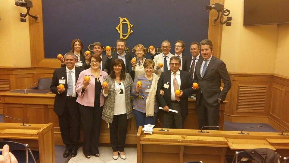 Carlentini come combattere la crisi agrumicola for Tv camera deputati