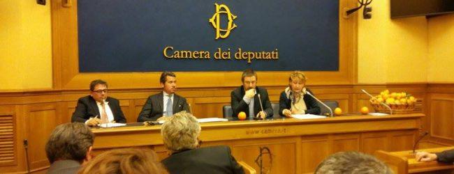 Carlentini  Come combattere la crisi agrumicola: conferenza alla Camera dei Deputati