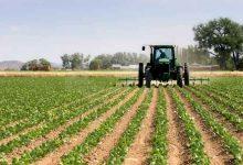 Lentini| Agricoltura: incontro con Cracolici