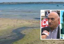 Augusta| Mare vietato ad Augusta, Munafò invita il sindaco a risolvere la questione della depurazione