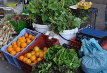 Carlentini| Mercato agricoltori: il sindaco indugia