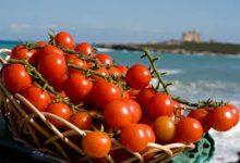 Siracusa| Pomodorino, continua la battaglia per la tutela