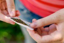 Francofonte| Nascondeva marijuana in casa: muratore arrestato e rimesso in libertà