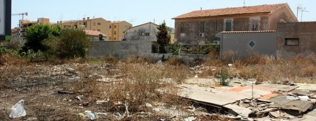Siracusa| Via Giarre, radici sin dentro le abitazioni