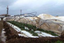 Pachino| Due milioni per la nevicata 2014