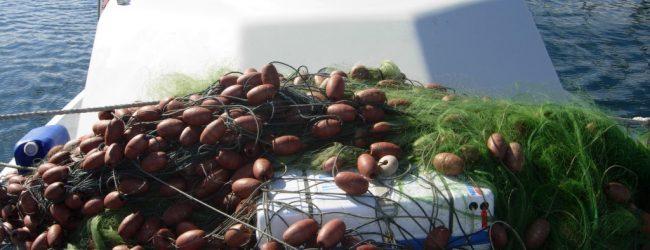 Augusta| Sequestrata una rete da pesca nel porto. Sanzione di 4000 euro al trasgressore