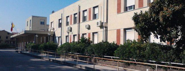 Lentini| Topi a scuola, chiusi fino a sabato i plessi Riccardo da Lentini e Notaro Jacopo