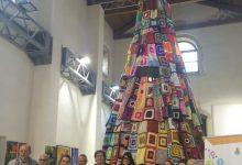 Siracusa| Inaugurato l'albero di lana