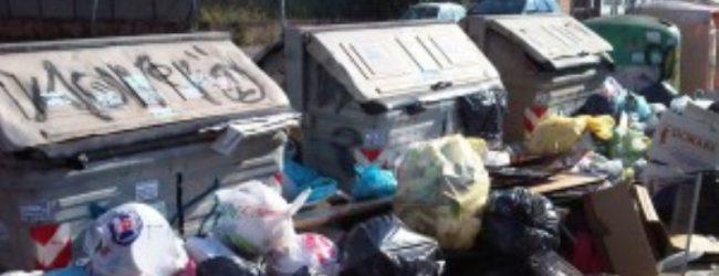 Pachino| Raccolta rifiuti, parte la gara per la gestione
