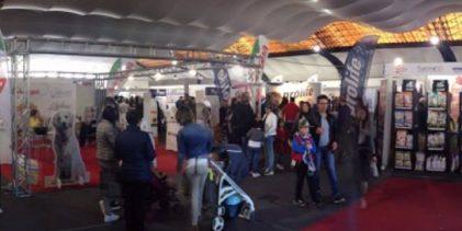 Palermo  Si è conclusa la prima tappa di Expopet