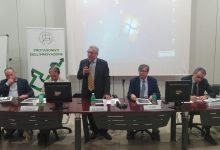Catania| Sistema Portuale Sicilia Orientale: Iniziativa di Ordine, Fondazione Ingegneri e Università (Dicar)