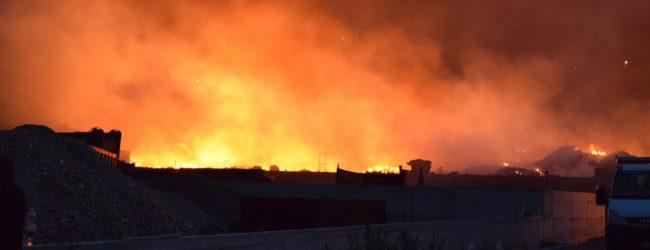Palermo| Ristoro dei danni provocati dagli incendi