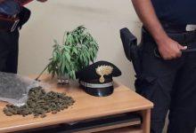 Siracusa| Servizi anti droga su tutto il territorio da parte dei Carabinieri della Compagnia di Siracusa