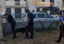 Avola  Parco Robinson al setaccio: denunce, sanzioni e controlli dei carabinieri della compagnia di Noto