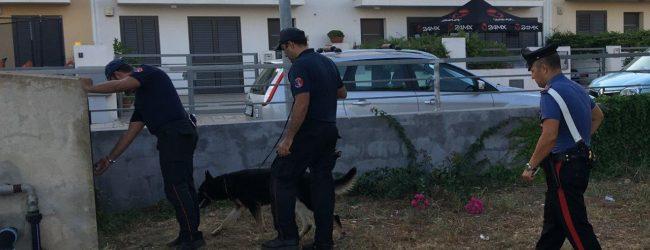 Avola| Parco Robinson al setaccio: denunce, sanzioni e controlli dei carabinieri della compagnia di Noto