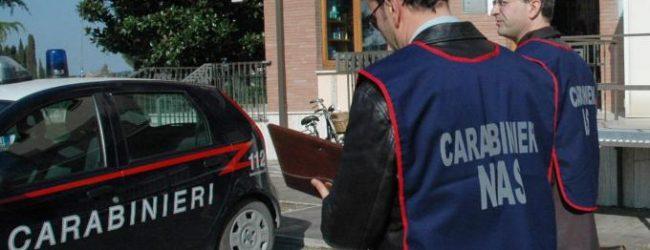 Augusta| Servizi a largo raggio dei carabinieri della Compagnia e del Nas