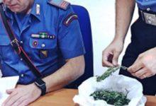 Carlentini | Busta con 50 grammi di marijuana dentro un pozzo, arrestato un bracciante agricolo