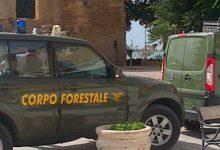 Priolo| Forestali, deciso il sit-in a Palermo
