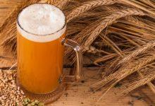 Siracusa  Le Domeniche del Gusto, spazio alla birra artigianale