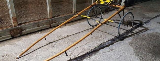 Siracusa  Corse clandestine, arrestati proprietario e fantino