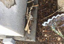 Siracusa| Cimitero Horror, adesso manca pure l'acqua