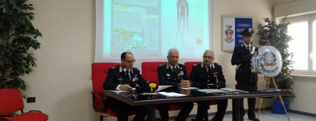 Siracusa| Calendario storico dei Carabinieri, puntuale interprete