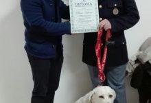 Augusta| Dog Therapy per i diversamente abili dell'associazione 20 Novembre