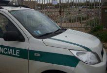 Augusta| Polizia provinciale: sequestrati 1 fucile e 35 munizioni, denunciate 2 persone