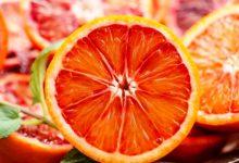 Lentini | Slow Food e il Mercato della Terra celebrano l'arancia rossa