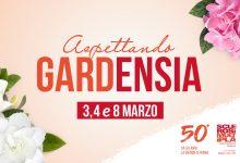 Siracusa| Gardenia e ortensia un doppio aiuto per combattere la sclerosi multipla