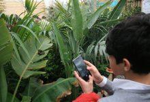 Siracusa| Boom di visitatori alla Casa delle Farfalle