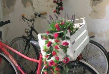 Augusta| Festa della bici in fiore a cura del comitato commercianti