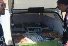 Siracusa| Comprava pesce da pescatori sportivi