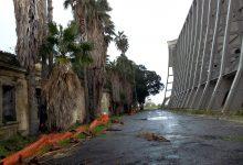 Augusta| Petizione popolare: Insieme per l'Hangar. Una firma per L'Unesco