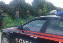 Siracusa| Belvedere rubano un'auto e minacciano proprietario