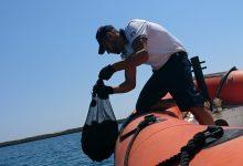 Augusta| La Guardia costiera sequestra circa 200 ricci di mare