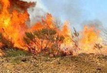 Siracusa| Catasto incendi, diffida ai comuni