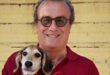 Siracusa | «Accesso libero dei volontari nei canili», appello dell'assessore Fabio Granata