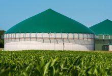 Lentini | Impianti biogas, l'idea non piace all'amministrazione comunale
