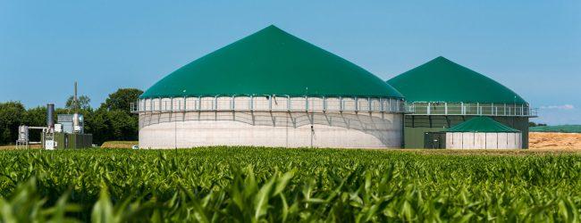 Lentini   Impianto di biogas, il 27 gennaio l'udienza di merito al Tar di Catania