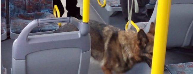 Siracusa| Controlli su bus-scuola, trovata droga sotto i sedili