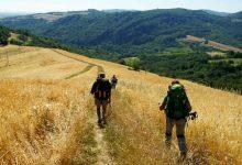 Lentini | La via Francigena Fabaria, un'opportunità per il territorio?