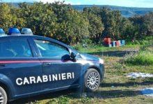Siracusa| Caporalato e lavoro nero, sospese tre aziende da Lentini a Pachino