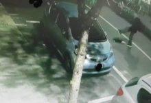 Siracusa  Schiaccia la testa ad un gatto in via Trieste. Il bruto sarebbe un &#8220;satanista&#8221;<span class='video_title_tag'> -Video</span>