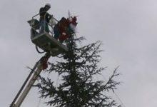 Siracusa| Alberi di Natale in periferia per un futuro migliore