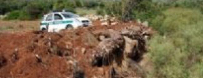 Siracusa| Polizia Provinciale sequestra due aree a Cugni per omessa bonifica