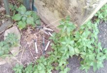 Siracusa| Via Regia Corte: la bonifica spetta al Comune non alla Soprintendenza