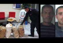 Floridia| Tre arresti per il furto di 700 kg. di arance