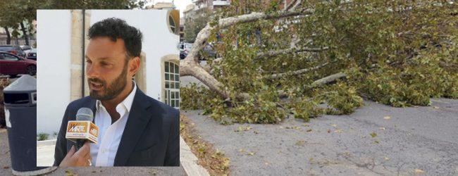 """Siracusa  Danni del maltempo, Giunta delibera """"Stato di calamità naturale"""""""